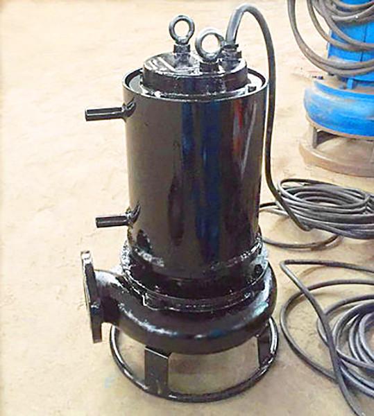 3kw小型泥砂泵带冷却罩