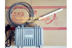 金属溶液测温,金属溶液连续测温仪,钢水铁水测温