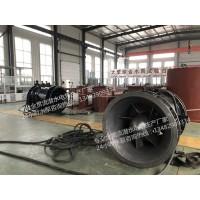广东排涝站QGWZ贯流潜水泵