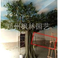 郑州枫林园艺树定制