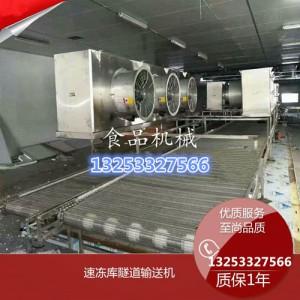 平板式单层速冻饺子隧道输送线厂家