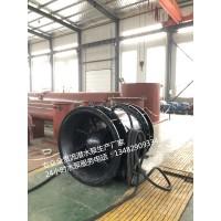 广西800QGWZ-70全贯流潜水泵生产厂家