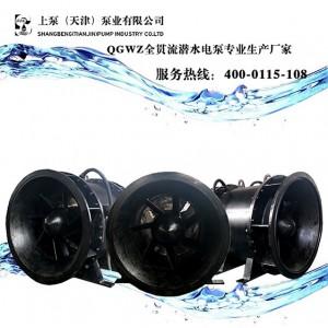湿坑式安装QGL潜水贯流泵多少钱