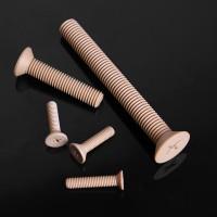 耐高温,耐腐蚀,耐磨损PEEK沉头十字螺丝  支持定制