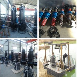 郑州大颗粒耐用铁砂泵  大颗粒耐用泥沙泵机组厂家电话
