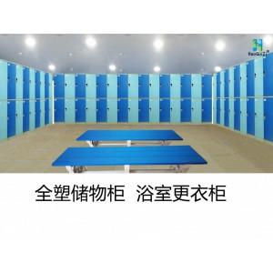 厂家供应好柜子牌620XL型 ABS塑料更衣柜 塑料储物柜