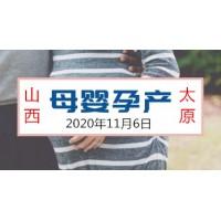 2020年山西产后修复康复展览会太原孕博会
