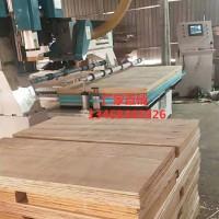 木工数控纵横锯,全自动数控纵横锯,实木板材木箱纵横锯