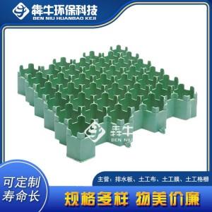 重庆停车场消防通道植草格质量可靠